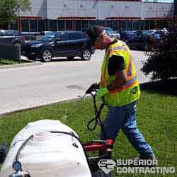 lawn care in winnipeg