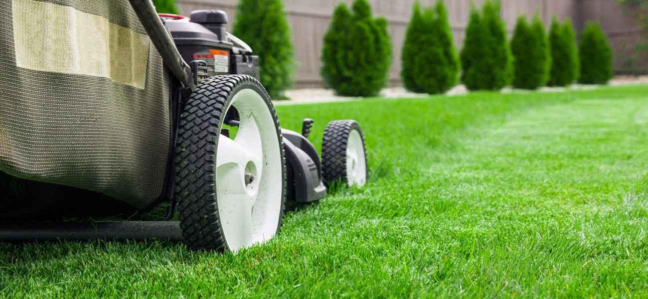 Lawn Companies Winnipeg
